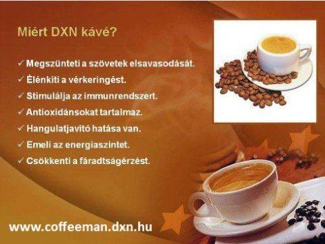 Ganoderma kávé hatása